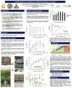 Carbohydrates as a nitrogen use efficiency indicator in cassava